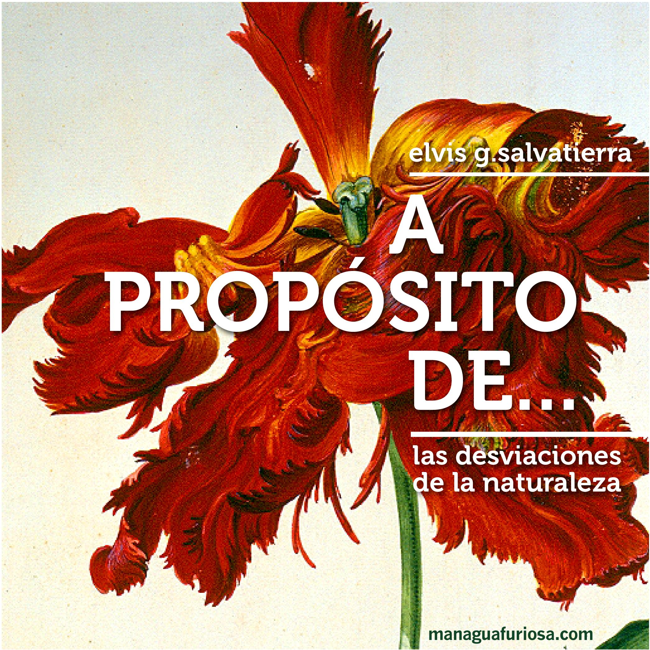 A PROPOSITO DE-03