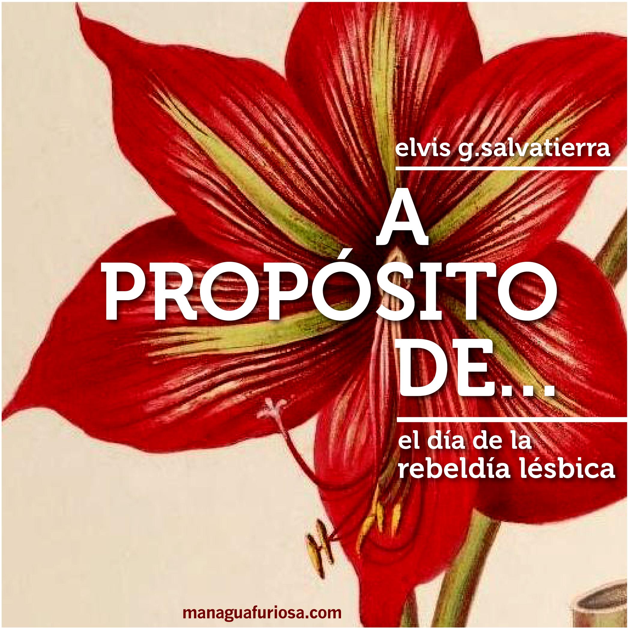 A PROPOSITO DE rebeldia lesbica-04