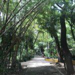 Entrada del Arboretum