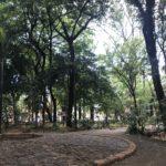 Rotonda del Arboretum