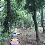 Un camino dentro del Arboretum