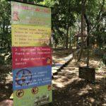 Reglas del Arboretum