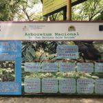 Funciones del Arboretum