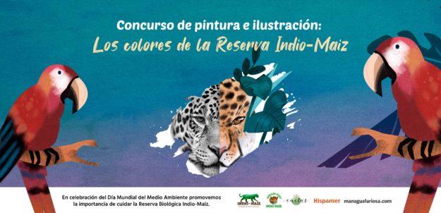 Lanzamiento del Concurso de Pintura e Ilustración: Los Colores de la Reserva Indio-Maíz